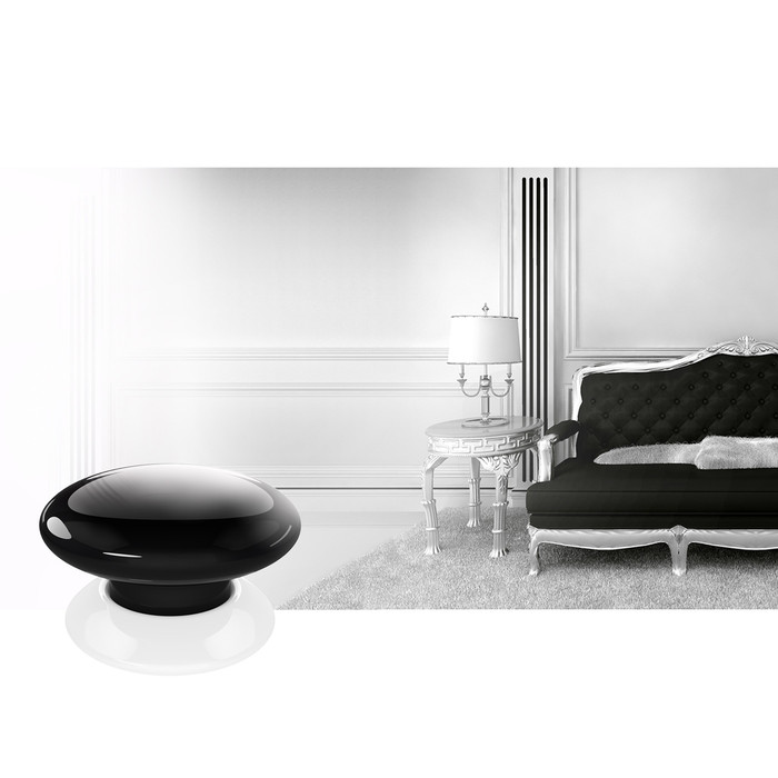 Fibaro The Button (black) - 2